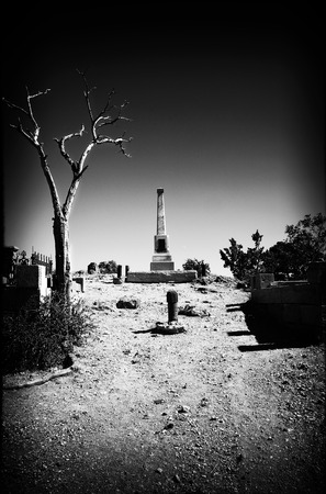 Spooky entrance to a cemetery showing a dead tree and grave markers done with a Black and White Film Noir look and feel to it.