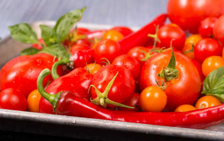 Fresh tomatoes, peppers, with basil on a sheet pan ready for roasting Stock Photo