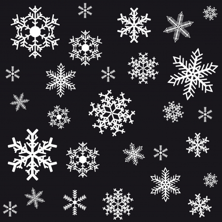 Snowflakes on a black background  Vector