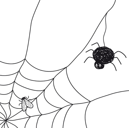 caught: Spider with a fly in a web  Illustration on white background