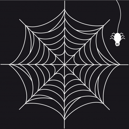 black and white spiders: Print