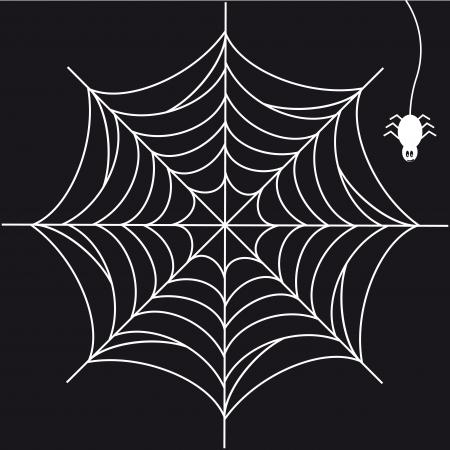 spider web: Print