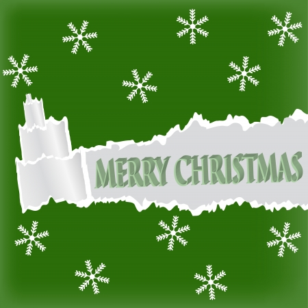 Torn paper in the shape of Christmas tree  Christmas card  Vector