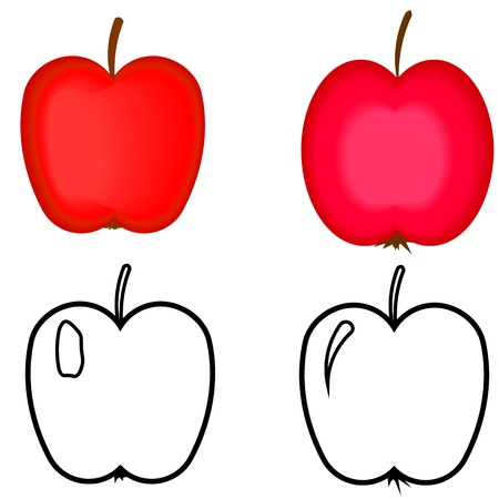 Set of red apples  Apples for coloring book  Illustration
