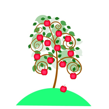 Beautiful apple tree with an apples for your design  Illustration
