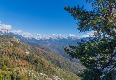sequoia: Moro Rock Scenic View In Sequoia National Park, California