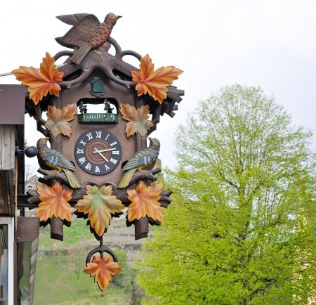 reloj cucu: reloj de cuco de madera en Alemania
