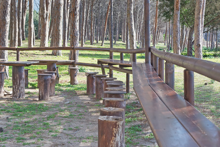 pinewood: picnic tables in the pinewood in Mugoni Stock Photo
