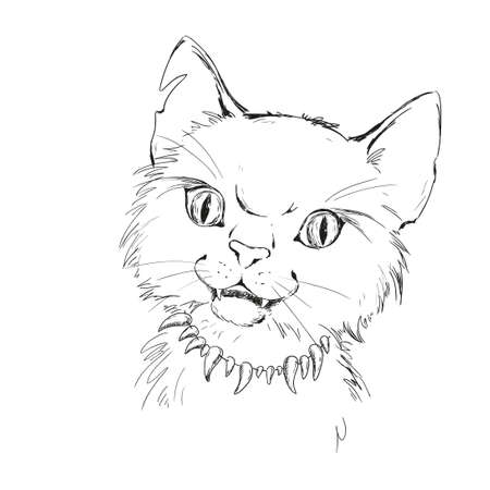 hissing: Character wild cat. Tramp street. Tattoo sketch vector