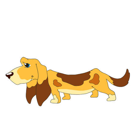 hound: Cute dog character. Cartoon Dog Basset Hound.