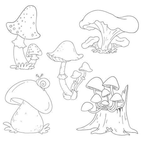 Champignons forestiers. Champignons vénéneux et comestibles. Collection de contours pour cahier de coloriage. Vecteur isolé Vecteurs