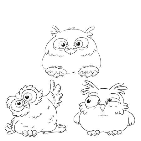 Collection of funny owls coloring book. Forest birds. Vector isolated.
