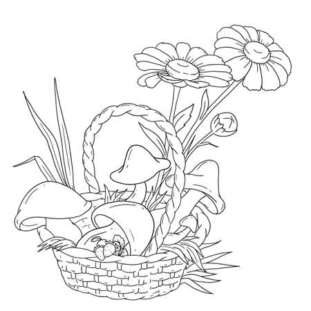 Basket with mushrooms and berries. Mushrooms and chamomiles. Forest harvest. Vector illustration for coloring book.