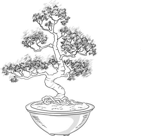 Bonsai tree. Japanese tree miniature. Silhouette on a white background. Potted tree. Japanese art. Vector isolated on white background. Иллюстрация