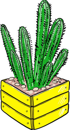 Cartoon cactus in a wooden pot. Vector illustration on a white background. Bright picture.