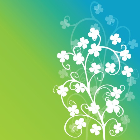 Clovers foliage on green background, st. patricks day photo