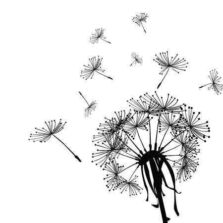 posterity: Black dandelion in the wind