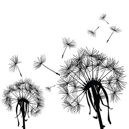 Black dandelions in the wind Stock Photo - 7032695