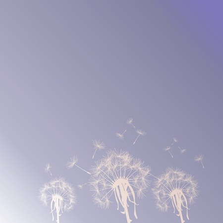 Dandelion silhouettes on the sky Stock Photo - 7032286