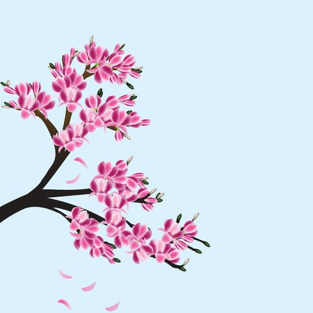 Illustration of a magnolia tree illustration
