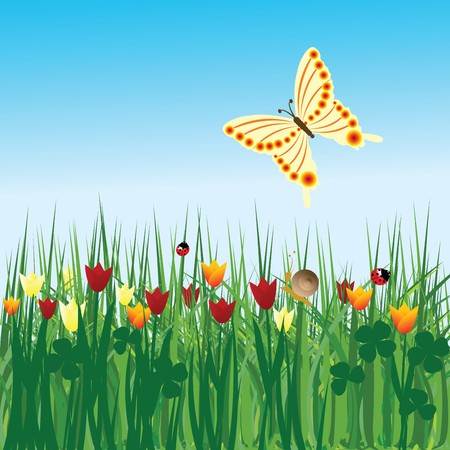 Spring background with tulips and butterfly Stock Photo - 7032561