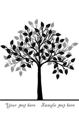 Black tree photo