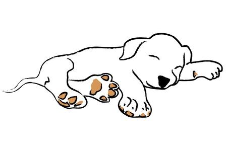 traino: Mano disegno cucciolo dorme su sfondo bianco Vettoriali