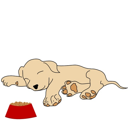 Sleeping puppy with food bowl