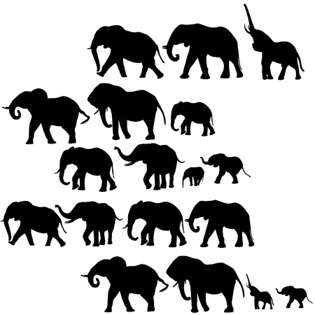Background with elephants silhouettes Vector