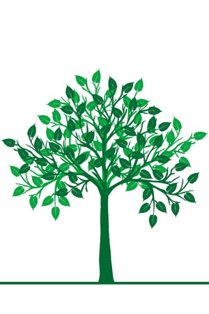 Illustration of a green tree Stock Vector - 17311029