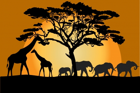 tall tree: Savannah landscape with animals