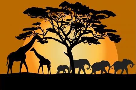 Savannah landschap met dieren