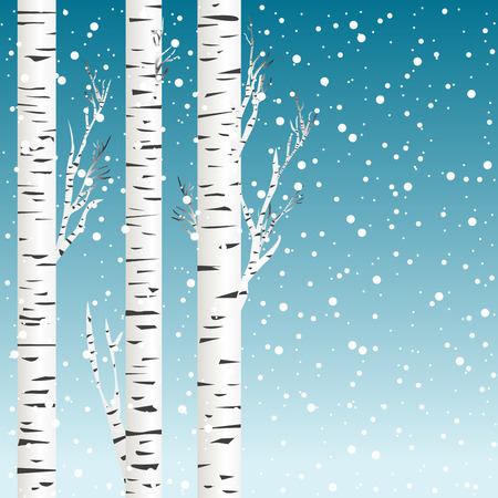 birch forest: Winter background with birch trees and snowflakes