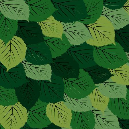 composition art: Green leaves carpet