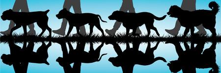 caucasian shepherd: Caucasian Shepherd silhouettes walking by the water