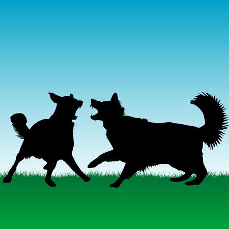 kampfhund: Hunde k�mpfen oder Spielen im Freien