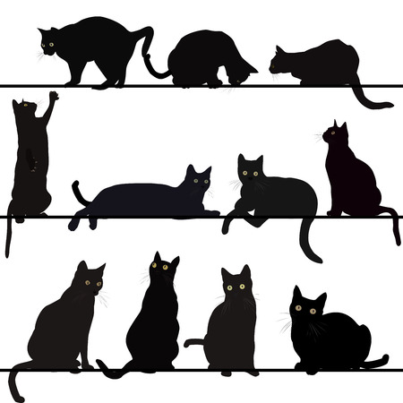black cat silhouette: Set of cats silhouettes Illustration
