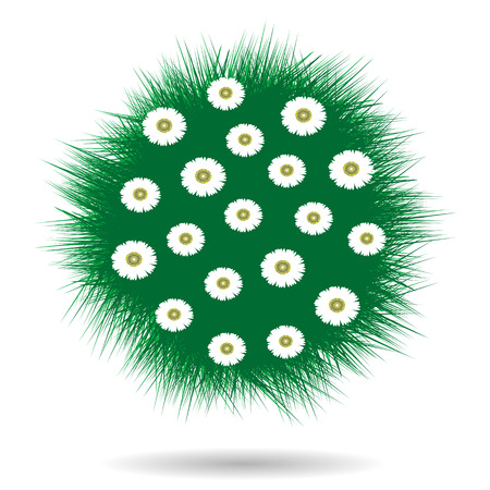 green grass: Green grass  ball with chamomiles over white background