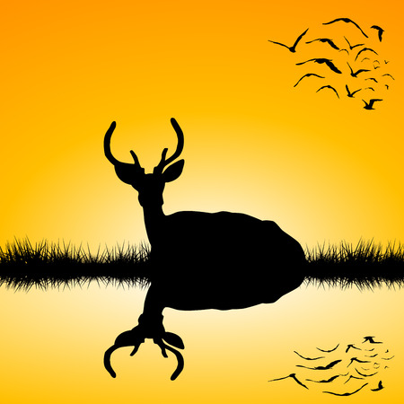 rut: Landscape with sitting deer stag silhouette at sunset Illustration