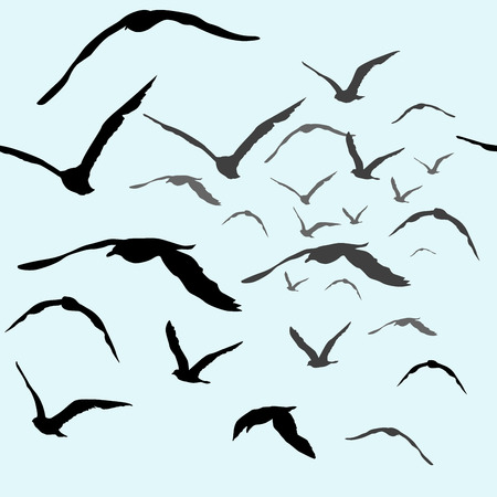空のシームレスなパターンを飛んでいる鳥