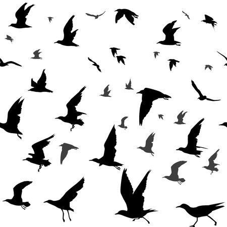 Seamless background with flying birds