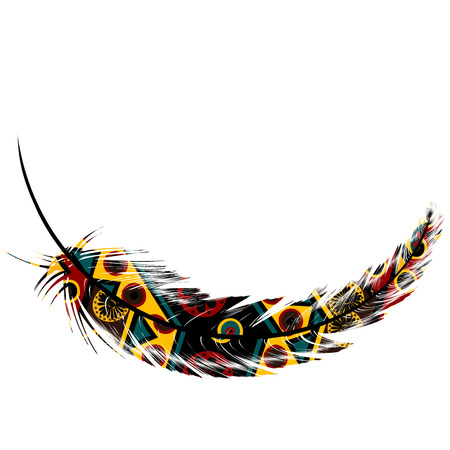 Feather with ethnic motifs isolated on white background