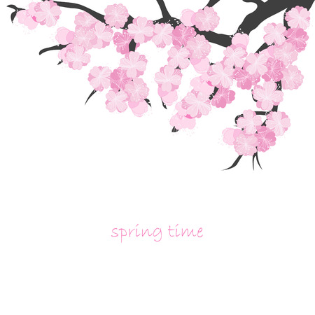 cherry blossom: Spring card with cherry branch Illustration