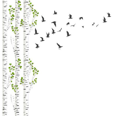 Achtergrond met berkenbomen en vogels vliegen Stock Illustratie