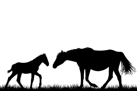 Silhouettes of mare and her foal