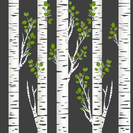 Birch trunks in night