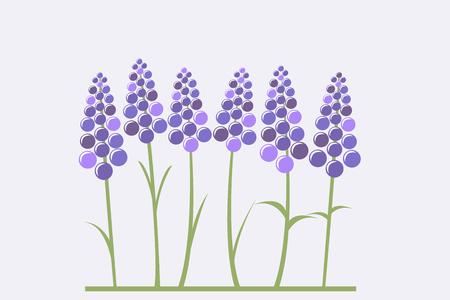 Carte de voeux avec lavande stylisée Banque d'images - 91353675