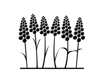 Fleur de lavande stylisée Banque d'images - 91880685