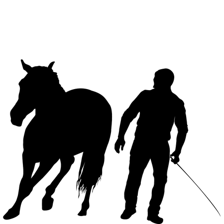 Silhouette of a man training a horse