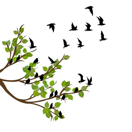 Flock of flying birds on tree branch